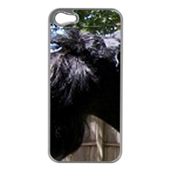Giant Schnauzer Apple Iphone 5 Case (silver)