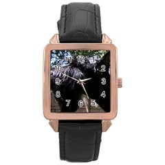 Giant Schnauzer Rose Gold Leather Watch
