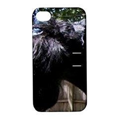 Giant Schnauzer Apple Iphone 4/4s Hardshell Case With Stand