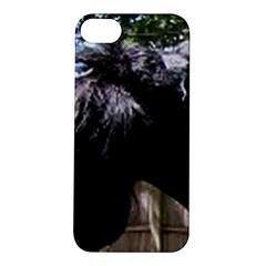 Giant Schnauzer Apple Iphone 5s/ Se Hardshell Case