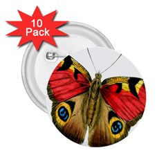 Butterfly Bright Vintage Drawing 2 25  Buttons (10 Pack)