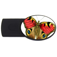 Butterfly Bright Vintage Drawing Usb Flash Drive Oval (4 Gb)