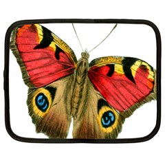 Butterfly Bright Vintage Drawing Netbook Case (xxl)