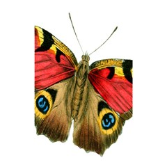 Butterfly Bright Vintage Drawing Shower Curtain 48  X 72  (small)
