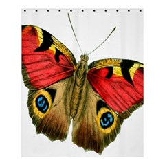 Butterfly Bright Vintage Drawing Shower Curtain 60  X 72  (medium)