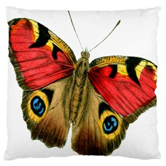 Butterfly Bright Vintage Drawing Large Cushion Case (one Side)