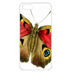Butterfly Bright Vintage Drawing Apple Iphone 5 Seamless Case (white)