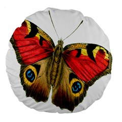 Butterfly Bright Vintage Drawing Large 18  Premium Flano Round Cushions