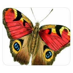Butterfly Bright Vintage Drawing Double Sided Flano Blanket (small)
