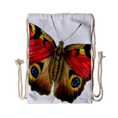 Butterfly Bright Vintage Drawing Drawstring Bag (small)