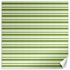 Spring Stripes Canvas 16  X 16