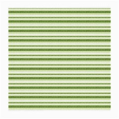 Spring Stripes Medium Glasses Cloth