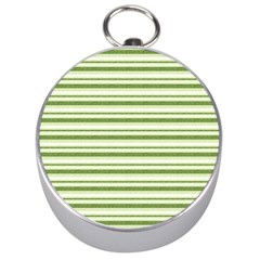 Spring Stripes Silver Compasses