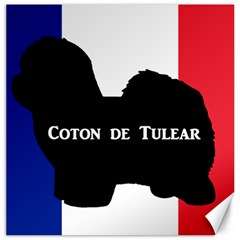 Coton De Tulear Silo Name France Flag Canvas 12  X 12