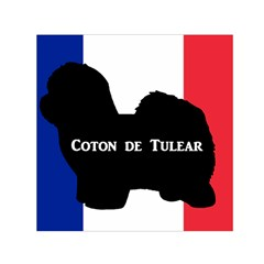 Coton De Tulear Silo Name France Flag Small Satin Scarf (square)