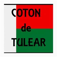 Coton Name Flag Madagascar Medium Glasses Cloth