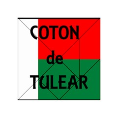 Coton Name Flag Madagascar Acrylic Tangram Puzzle (4  X 4 )