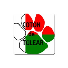 Coton Name Madagascar Paw Flag Square Magnet