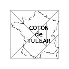 France Outline W Name Acrylic Tangram Puzzle (4  X 4 )
