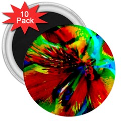Flowers With Color Kick 1 3  Magnets (10 Pack)