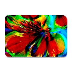 Flowers With Color Kick 1 Plate Mats