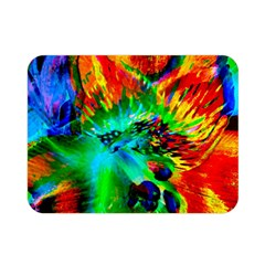 Flowers With Color Kick 2 Double Sided Flano Blanket (mini)