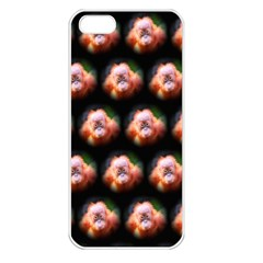 Cute Animal Drops  Baby Orang Apple Iphone 5 Seamless Case (white)