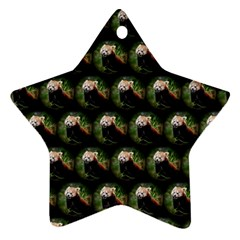 Cute Animal Drops   Red Panda Star Ornament (two Sides)