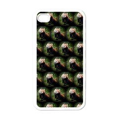 Cute Animal Drops   Red Panda Apple Iphone 4 Case (white)