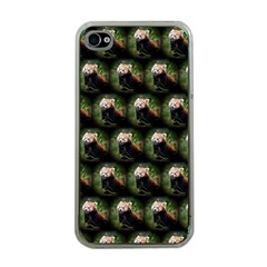 Cute Animal Drops   Red Panda Apple Iphone 4 Case (clear)