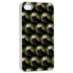 Cute Animal Drops   Red Panda Apple Iphone 4/4s Seamless Case (white)