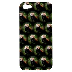Cute Animal Drops   Red Panda Apple Iphone 5 Hardshell Case