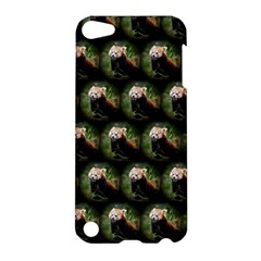 Cute Animal Drops   Red Panda Apple Ipod Touch 5 Hardshell Case