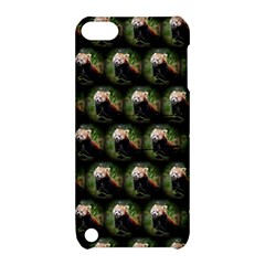 Cute Animal Drops   Red Panda Apple Ipod Touch 5 Hardshell Case With Stand