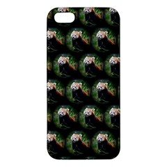 Cute Animal Drops   Red Panda Apple Iphone 5 Premium Hardshell Case