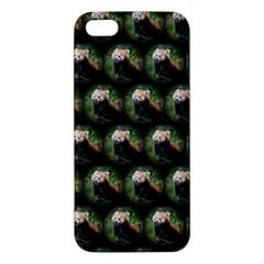 Cute Animal Drops   Red Panda Iphone 5s/ Se Premium Hardshell Case