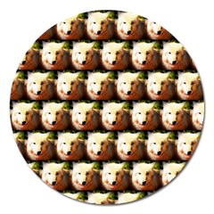 Cute Animal Drops   Wolf Magnet 5  (round)