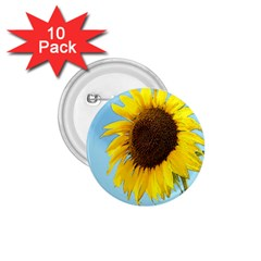 Sunflower 1 75  Buttons (10 Pack)