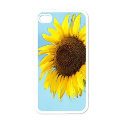 Sunflower Apple Iphone 4 Case (white)