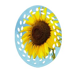 Sunflower Oval Filigree Ornament (two Sides)