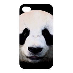 Panda Face Apple Iphone 4/4s Hardshell Case