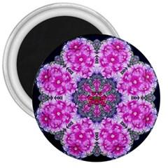 Fantasy Cherry Flower Mandala Pop Art 3  Magnets