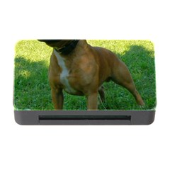 3 Full Staffordshire Bull Terrier Memory Card Reader With Cf