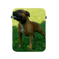3 Full Staffordshire Bull Terrier Apple Ipad 2/3/4 Protective Soft Cases