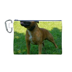 3 Full Staffordshire Bull Terrier Canvas Cosmetic Bag (m)