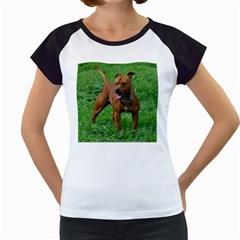4 Full Staffordshire Bull Terrier Women s Cap Sleeve T