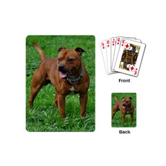 4 Full Staffordshire Bull Terrier Playing Cards (mini)