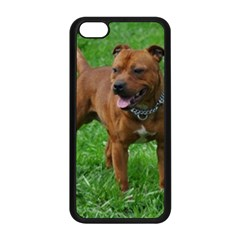 4 Full Staffordshire Bull Terrier Apple Iphone 5c Seamless Case (black)
