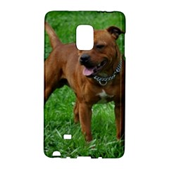 4 Full Staffordshire Bull Terrier Galaxy Note Edge