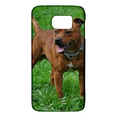4 Full Staffordshire Bull Terrier Galaxy S6